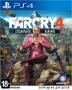 Far Cry 4. Специальное издание [PS4]
